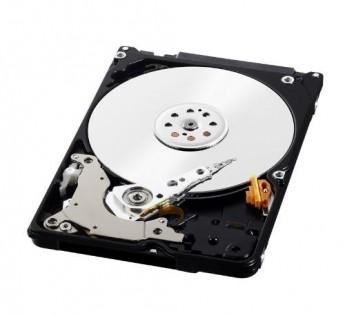 WD Blue 320GB Internal Hard Drive (WD3200BPVT)