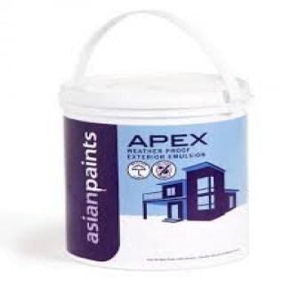 Asian Paint 10Litre Apex Paint 10 Litre Paint White